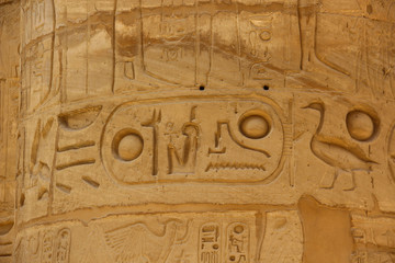 Ancient Egyptian hieroglyphs carved on the stone. The name of the Pharaoh in the cartouche.