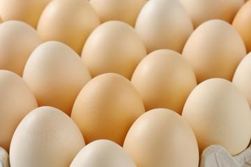 fresh eggs in a tray