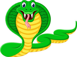 illustration of angry cobra snake
