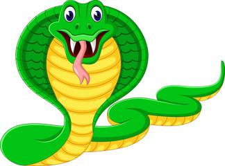 illustration of angry cobra snake