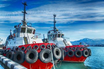 Marine tug berth black sea Georgia Batumi Wall mural