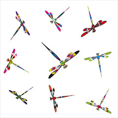 Colorful dragonflies  bright and simple set of cheerful bright iridescent dragonflies insects for decor, decoration, design