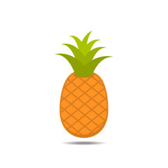 pineapple fruit on white background