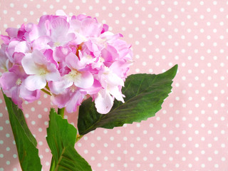 beautiful pink hydrangea of artificial flowers bouquet