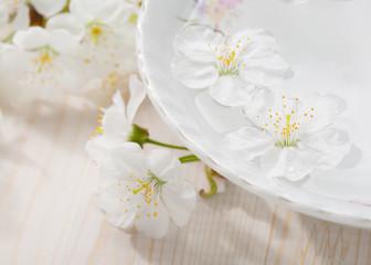 Spoed Fotobehang Bloemen Floating flowers ( Cherry blossom) in white bowl. Focus on near flower