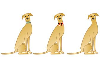 座る犬 首輪 バリエーション