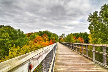 Autumn Walk. A walk along a converted rail trestle turned hiking path. Wadhams to Avoca Rail Trail. St. Clair County, Michigan.