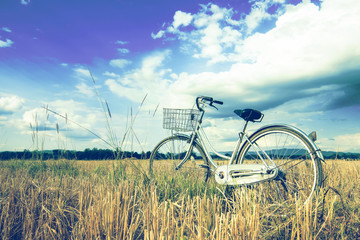 Retro bicycle in grass field