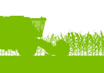 Corn field harvesting with combine harvester green ecology organ