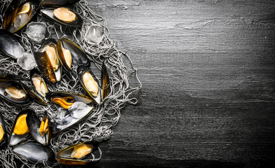 Clams on the fishing net. On black wooden background.