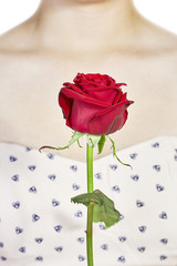 Red rose and decollete woman