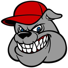 Bulldog with Baseball Cap