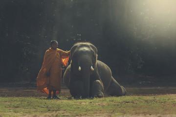 monk with elephant