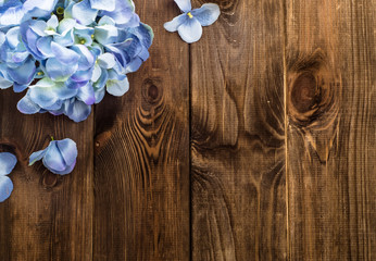 Beautiful hydrangea on wood with copy space