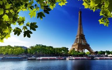Paryż Francja eiffel rzeka plaża drzew
