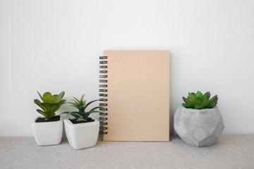 Notepad and succulents pots, room interior mockup, copy space ba