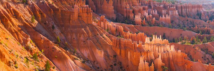 Panorama of the Spires of Bryce Canyon at Sunset