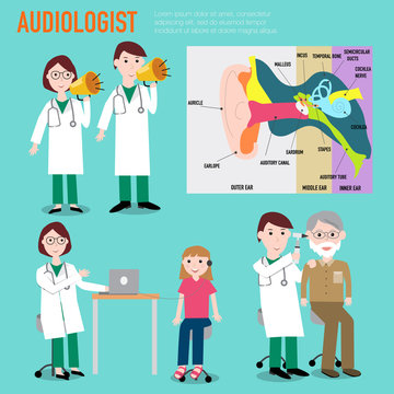 Audiologist , audiology , anatomy of ear vector infographic illu