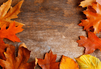 Frame of autumn leaves in a row on wooden background, close up