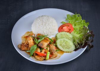 Stir-fried Crispy Pork with rice