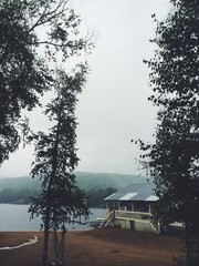 Foggy day at the cottage