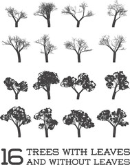 Set of Vector Trees in Silhouettes, Black and White, With and Without Leaves