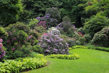 Fotobehang Tuin Garden.