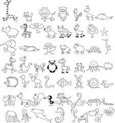 Children's drawings of doodle animals