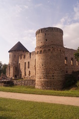 Castle in nature