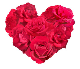 Red rose isolated in heart shape