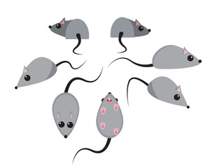 Set of rat in flat style