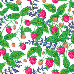 Raspberries seamless pattern with raspberry and leaves on white background
