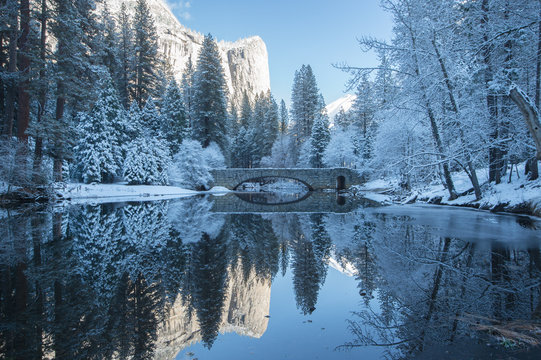 winter reflection of the trees in yosemite national park