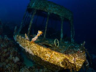 Glassboat wreck