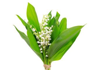 Poster de jardin Muguet de mai Bouquet of lily of the valley