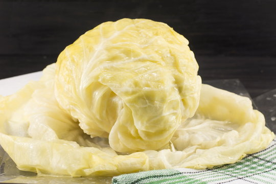 Head of sauerkraut