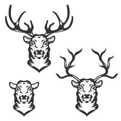 Set of deer heads in vector.