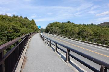 walkway of a bridge in Japan