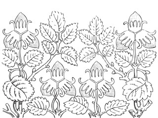 Beautiful blossoming wild rose branch with white flowers vector