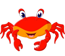 illustration of cute crab cartoon