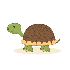 Cute cartoon turtle isolated on white background. Vector illustration