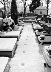 some graves on the cemetery and weird line of footprints in the snow in black and white