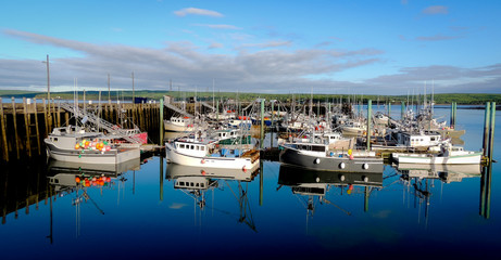 Boats in the harbour at low tide in Digby, Nova Scotia.   Nova Scotia summer, late afternoon with evening approaching.   Boats tied up in low tide, in for the day.  Sunshine on calm coastal water.