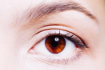 Beautiful woman's brown eye close up
