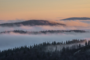 Poster Morning with fog Carpathian mountains in the clouds, sunrise seen from Wysoka mountain in Pieniny, Poland