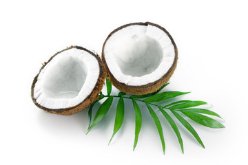 Coconuts with green palm leaf isolated on a white background.