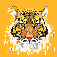 Low polygon Tiger geometric pattern - Vector illustration