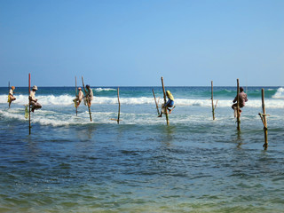 Fishermen at sticks in Weligama bay, Sri Lanka