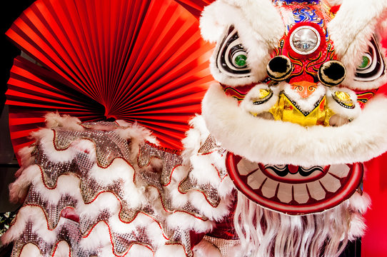 Traditional colorful Chinese new year lion with red fan