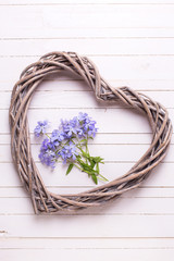 Background with  blue flowers and  big decorative heart on white